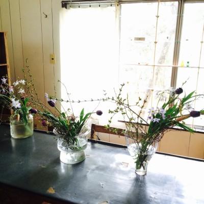 花の会新規募集2月